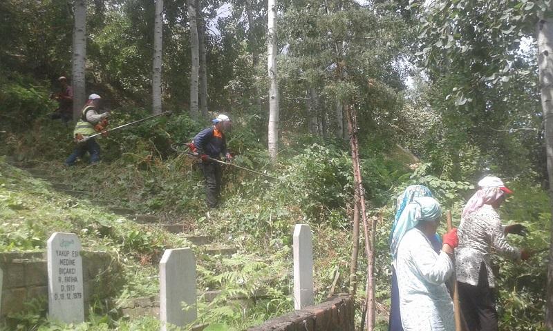 Büyükşehir Adacık'da Mezarlıkları Temizledi