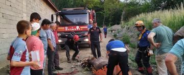 Adacık'ta Mahsur Kalan İnekleri Kurtarma Operasyonu