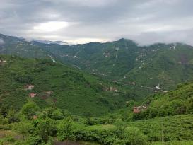 Trabzon'da köyler geri geliyor!